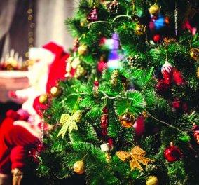 Τα πιο υπέροχα Χριστούγεννα στο One Salonica - Με συναρπαστικές εορταστικές εκδηλώσεις για μικρούς & μεγάλους  - Κυρίως Φωτογραφία - Gallery - Video