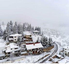 Καλλιάνος - Αρναούτογλου: Έρχεται από την Κυριακή η ισχυρότερη κακοκαιρία του φετινού χειμώνα - Πτώση της θερμοκρασίας έως 14 βαθμούς  - Κυρίως Φωτογραφία - Gallery - Video