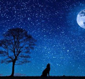 """Απόψε η """"Πανσέληνος του Λύκου"""" - Ορατή & από την Ελλάδα η πρώτη έκλειψη της Σελήνης του 2020  - Κυρίως Φωτογραφία - Gallery - Video"""