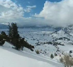 Μια ονειρική διαδρομή στο απόλυτο λευκό - Κάνοντας σκι στα Λευκά Όρη (ΒΙΝΤΕΟ) - Κυρίως Φωτογραφία - Gallery - Video
