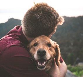 Πώς τα κατοικίδια βελτιώνουν την ψυχική μας υγεία - Ο καλύτερος φίλος ενός ανθρώπου! - Κυρίως Φωτογραφία - Gallery - Video