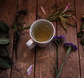 Aυτά είναι τα 10 αποδεδειγμένα οφέλη που έχει το πράσινο τσάι - Κυρίως Φωτογραφία - Gallery - Video