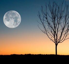 Η Μαίρη Μακρογαμβράκη γράφει για την αυριανή Πανσέληνο: Ο Ήλιος στον Κριό, εγωιστής & επιθετικός, η Σελήνη στον Ζυγό ζητούν συμβιβασμό - Πως θα φτάσουμε στο εμείς - Κυρίως Φωτογραφία - Gallery - Video