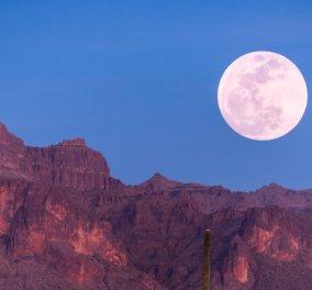 Η Μαίρη Μακρογαμβράκη γράφει για το eirinika: Οι δεσμοί της σελήνης μας καλούν να αφήσουμε πίσω τη ψυχρότητα, την υπεροψία, την εσωτερική μας τσιγκουνιά - Κυρίως Φωτογραφία - Gallery - Video
