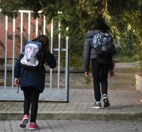 Νίκη Κεραμέως: Νωρίτερα θα ανοίξουν τα σχολεία τη νέα χρονιά, αλλά όχι πριν την 1η Σεπτεμβρίου - Κυρίως Φωτογραφία - Gallery - Video