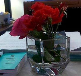 Και άριστη & τέλεια η Αριστοτέλεια Δόγκα, η Εισαγγελέας στη δίκη Τοπαλούδη - Γιατί αναγκάστηκε να κατεβάσει το προφίλ της στο facebook - Κυρίως Φωτογραφία - Gallery - Video