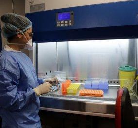 Το Ισραήλ ένα βήμα πιο κοντά στην αντιμετώπιση του κορωνοϊού; - Eπιστήμονες ανακάλυψαν αντίσωμα που εξουδετερώνει τον ιό  - Κυρίως Φωτογραφία - Gallery - Video