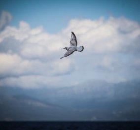 Η ατμοσφαιρική ρύπανση μειώθηκε τόσο πολύ ώστε σε 21 χώρες σημειώθηκαν 11.000 λιγότεροι θάνατοι – Και στην Ελλάδα; - Κυρίως Φωτογραφία - Gallery - Video