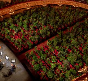 Story of the day: Με 2.292 φυτά αντί για θεατές η όπερα της Βαρκελώνης – Η ιδιαίτερη πρεμιέρα μετά το lockdown (Βίντεο) - Κυρίως Φωτογραφία - Gallery - Video