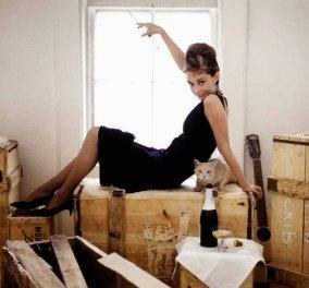 Σπάνιο ''διαμάντι'' ενσταντανέ: Η Όντρεϊ Χέπμπορν με ομπρελίνο και μαγιό - Από το αρχείο Getty Images, καλοκαιρινή μόδα 50-60s - Κυρίως Φωτογραφία - Gallery - Video