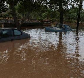 Κακοκαιρια Ιανός: Η στιγμή που τα ορμητικά νερά πλημμυρίζουν το Φισκάρδο – Δείτε το συγκλονιστικό βίντεο  - Κυρίως Φωτογραφία - Gallery - Video