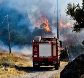 Πυρκαγιά σε Καλύβια:  Εκκενώνεται και η Ανάβυσσος & ενισχύονται οι δυνάμεις πυρόσβεσης - Μήνυμα από το 112 - Κυρίως Φωτογραφία - Gallery - Video