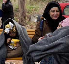 Πάνος Καρβούνης: Πως θα μπει τέλος στις «Μόριες» & τέλος στο διαβόητο «Δουβλίνο» - Όχι μόνο η Ελλάδα αλλά όλη η Ευρώπη συνυπεύθυνη στο μεταναστευτικό  - Κυρίως Φωτογραφία - Gallery - Video