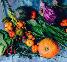 Tα βιολογικά τρόφιμα έχουν μεγαλύτερη θρεπτική αξία; - Τα οφέλη που προσφέρουν στην υγεία - Κυρίως Φωτογραφία - Gallery - Video