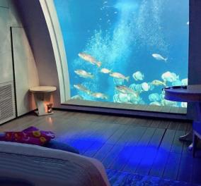 Το ξενοδοχείο των ονείρων σας  - Οι σουίτες βλέπουν σε ενυδρεία & σας μεταφέρουν στον παραμυθένιο κόσμο των ''ωκεανών'' (φωτό - βίντεο)  - Κυρίως Φωτογραφία - Gallery - Video