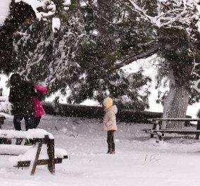 Λέανδρος: Χιόνια και στην Αττική από το βράδυ της Κυριακής - Στα λευκά «ντύνεται» η χώρα - Που θα «χτυπήσουν» τα φαινόμενα (φωτό & βίντεο) - Κυρίως Φωτογραφία - Gallery - Video