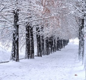 Kακοκαιρία «Λέανδρος»: Προ των πυλών με τσουχτερό κρύο, χιονοπτώσεις - Θα ''χτυπήσει'' και την Αττική  - Κυρίως Φωτογραφία - Gallery - Video