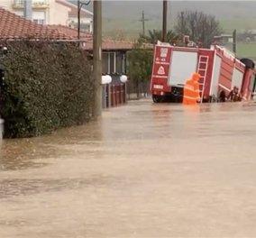 Έβρος: Θρήνος για τον 46χρονο πυροσβέστη - Παρασύρθηκε από τα νερά και πνίγηκε, πήγαινε να απεγκλωβίσει παιδιά (φωτό & βίντεο) - Κυρίως Φωτογραφία - Gallery - Video