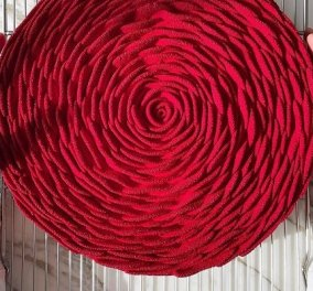 Cedric Grolet: Ο καλύτερος ζαχαροπλάστης του κόσμου δημιούργησε ένα αριστούργημα τούρτα - τριαντάφυλλο! Καρέ καρέ δείτε στο βίντεο - Κυρίως Φωτογραφία - Gallery - Video