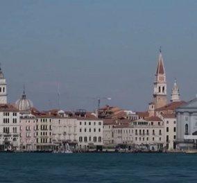 Απρόσμενοι επισκέπτες στα κανάλια της Βενετίας: Δελφίνια κολυμπούν κοντά στην πλατεία St. Mark's - Δείτε το βίντεο - Κυρίως Φωτογραφία - Gallery - Video