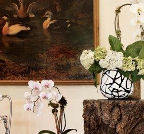 Το H&M & η Diane von Furstenberg μεταμορφώνουν το σπίτι μας: Ριχτάρια, διακοσμητικά και η ρόμπα με το διάσημο εμπριμέ μοτίβο (φωτό & βίντεο) - Κυρίως Φωτογραφία - Gallery - Video