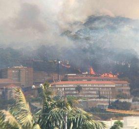Πυρκαγιά σε εμβληματικό όρος στην Κέιπ Τάουν προκάλεσε καταστροφές σε κτίρια του πανεπιστημίου - Τυλίχθηκε στις φλόγες η Βιβλιοθήκη (φωτό - βίντεο) - Κυρίως Φωτογραφία - Gallery - Video
