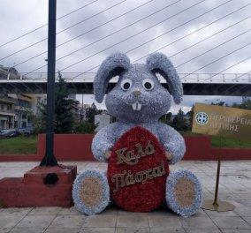 Καταβάλλεται σήμερα,  Μ. Τετάρτη το δώρο Πάσχα - Σε 678.096 εργαζόμενους, με αναστολή στη σύμβαση εργασίας (βίντεο) - Κυρίως Φωτογραφία - Gallery - Video