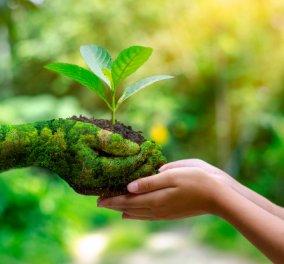 Παγκόσμια Ημέρα της Γης: 2,8% των εκτάσεων του πλανήτη παραμένει ανέπαφο οικολογικά, με υγιείς πληθυσμούς όλων των ενδημικών ζώων & φυτών - Κυρίως Φωτογραφία - Gallery - Video
