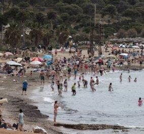 Κορωνοϊός - Ελλάδα: 2.146 νέα κρούσματα το τελευταίο 48ωρο -134 νεκροί, 797 διασωληνωμένοι - Κυρίως Φωτογραφία - Gallery - Video
