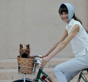 Μπαλαρίνες και mules για κομψές εμφανίσεις αλά Audrey Hepburn - Κάτι ήξερε η «ιέρεια» του στυλ και τις τιμούσε (φωτό) - Κυρίως Φωτογραφία - Gallery - Video
