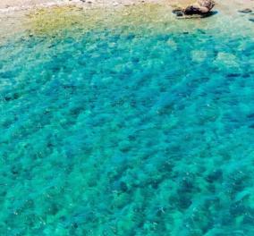 Greek summer 2021: O @socratesrivers παρουσιάζει την μαγευτική Aντίπαρο- Οι Έλληνες φωτογράφοι προτείνουν - Κυρίως Φωτογραφία - Gallery - Video