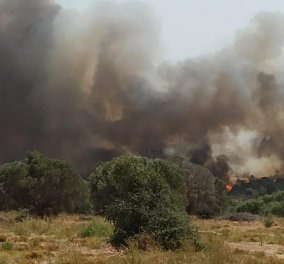Ανεξέλεγκτη η πυρκαγιά στη Ρόδο: Εκκενώθηκαν χωριά - Προσπάθεια για αποκατάσταση της ηλεκτροδότησης - Το μήνυμα από το 112 (φώτο-βίντεο)  - Κυρίως Φωτογραφία - Gallery - Video