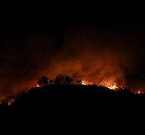 Βίντεο: «Σύννεφο» από καύτρες σκέπασε την Εθνική Οδό στις Αφίδνες – Πώς πέρασε η φωτιά στην άλλη μεριά - Κυρίως Φωτογραφία - Gallery - Video