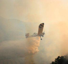 Ζάκυνθος: Δύο πυρκαγιές μέσα σε λίγη ώρα στα χωριά Λιθακιά και Μαχαιράδο - Έπεσε πυροσβεστικό αεροσκάφος - Σώος ο πιλότος (βίντεο) - Κυρίως Φωτογραφία - Gallery - Video