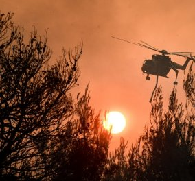 Πυρκαγιές: 9 τραυματίες από το μέτωπο της Βόρειας Αττικής & 11 από τη φωτιά στη Βόρεια Εύβοια - διασωληνωμένοι 2 πυροσβέστες (βίντεο) - Κυρίως Φωτογραφία - Gallery - Video