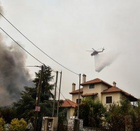 Φωτιά στην Αττική: Συγκλονιστικό βίντεο με τη διάσωση 7μελούς οικογένειας από στρατιώτες - Το σπίτι τους είχε ζωστεί στις φλόγες - Κυρίως Φωτογραφία - Gallery - Video