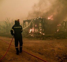 Φωτιά στα Βίλια: Μάχη με τις φλόγες κοντά στους οικισμούς Οινόη και Πανόραμα - μαίνεται για 4η ημέρα η πυρκαγιά (φωτό & βίντεο) - Κυρίως Φωτογραφία - Gallery - Video
