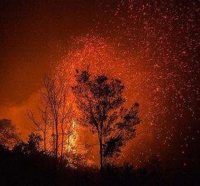 Ο Αύγουστος του 2021 θα μείνει για πάντα χαραγμένος στη συλλογική μνήμη αυτής της χώρας: Οι μύθοι και οι αλήθειες για τις φωτιές - Κυρίως Φωτογραφία - Gallery - Video