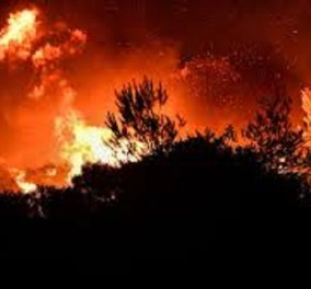 Καίγονται σπίτια στα Βίλια: Νέα αναζωπύρωση σε μεγάλη δασική έκταση απειλεί τον οικισμό – Εφιαλτικό το σκηνικό στην περιοχή (βίντεο) - Κυρίως Φωτογραφία - Gallery - Video