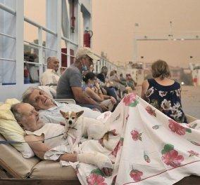 Η φωτογραφία της επιβίωσης! Εκείνος 89 εκείνη 87 με την Bella την σκυλίτσα τους σε ξαπλώστρες στο ferryboat  - Κυρίως Φωτογραφία - Gallery - Video