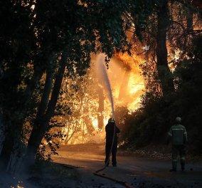 Μαίνεται η πυρκαγιά στην περιοχή της Βαρυμπόμπης - Κάηκαν σπίτια, εκκενώθηκαν Θρακομακεδόνες & Ολυμπιακό Χωριό - Οι φλόγες στρέφονται προς το Τατόι  - Κυρίως Φωτογραφία - Gallery - Video