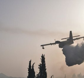 Ισχυρές επίγειες & εναέριες πυροσβεστικές δυνάμεις στη Γορτυνία  - Μάχη να μην περάσει στο Μαίναλο - Κυρίως Φωτογραφία - Gallery - Video