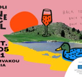 Vamvakou Experience Festival: Το ICC Women Hellas & η Ντίνα Νικολάου σε πικ- νικ γευσιγνωσίας στην πατρίδα του Σταύρου Νιάρχου - Κυρίως Φωτογραφία - Gallery - Video