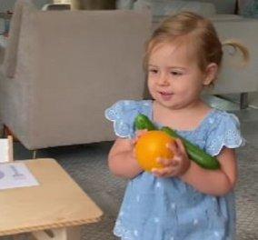 H Rosa είναι μόλις 24 μηνών αλλά φτιάχνει μόνη το σανκ της, έπλυνε ακόμα & τα πιάτα! - απολαύστε στο βίντεο την πιο χαριτωμένη πιτσιρίκα - Κυρίως Φωτογραφία - Gallery - Video