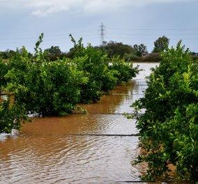Σάρωσε την Δυτική και Βόρεια Ελλάδα η κακοκαιρία Μπάλλος: Πλημμύρες και κατολισθήσεις σε Αγρίνιο - Μεσολόγγι (φωτό & βίντεο) - Κυρίως Φωτογραφία - Gallery - Video
