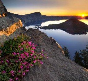 Η φωτογραφία της ημέρας - Από τον Dennis Frates - International Garden Photographer of the year 2013 - Κυρίως Φωτογραφία - Gallery - Video