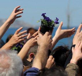Με 10.000 χιλιάδες γλαστρούλες με ωραία άνθη υποδέθηκαν οι Κρητικοί την Ανοιξη (φωτογραφίες)  - Κυρίως Φωτογραφία - Gallery - Video