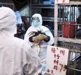 Εφιάλτης από την Κίνα: Μάθετε όσα χρειάζεστε για να αντιμετωπίσετε τη γρίπη! - Κυρίως Φωτογραφία - Gallery - Video