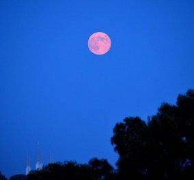 Απόψε το σπάνιο Αυγουστιάτικο φεγγάρι έχει 4 ονόματα: κόκκινη πανσέληνος, πανσέληνος του πράσινου καλαμποκιού, των καρπών (καρπερή) και των ψαριών ...  - Κυρίως Φωτογραφία - Gallery - Video