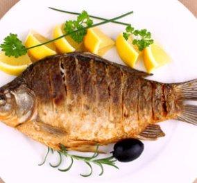 Οι 1000 + 1 λόγοι γιατί πρέπει να τρώμε περισσότερο ψάρι - Μυαλό, καρδιά λειτουργούν καλύτερα  - Κυρίως Φωτογραφία - Gallery - Video